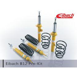 Eibach B12 Pro Kit - Ford Focus XR5 MY06-12