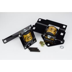 Damond Motorsports Side Motor Mount Combo - Ford Focus ST / RS
