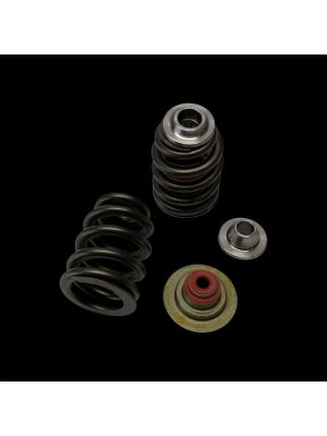 Brian Crower Can-Am X3 Rotax 900 Ace Beehive Spring/Titanium Retainer/Seat w/ Seal Kit